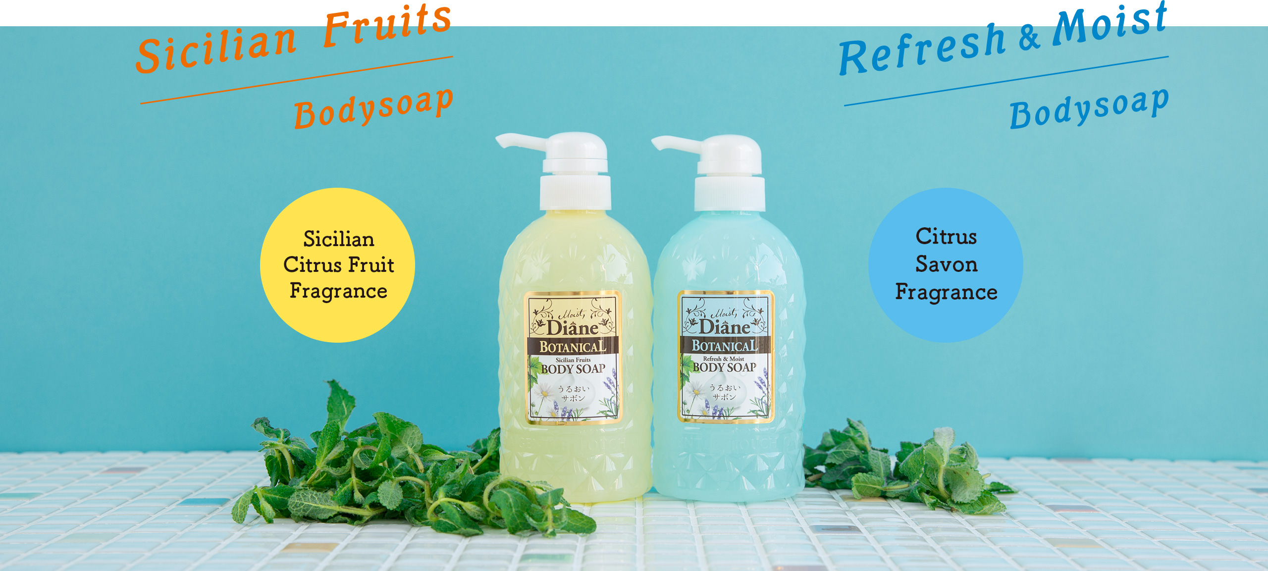 Sicilian Fruits Bodysoap / Refresh & Moist Bodysoap
